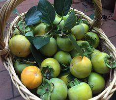Marmellata di cachi con noci, mele o arance! 4 ricette semplici per elaborare i frutti di stagione più saporiti dell'autunno! Beautiful Fruits, Chutney, Food And Drink, Homemade, Vegetables, Blog, Marmalade, Diet, Canning