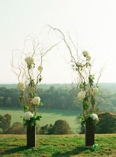 This easy to do arch promises to make your day look like you spent 1,000's for your wedding decor. Put them in a tall vase tie on some flowers and Whala! You now have an Arch that will wow your guest