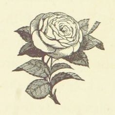 Image taken from page 8 of 'Love: the Reward. A novel' | The British Library