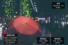 Umbrella - phocab.net