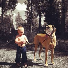 Small kid - Big dog..!!  #great #dane #picture
