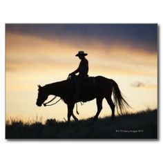 ==> consumer reviews          Silhouette of a Cowgirl on her horse against the Post Card           Silhouette of a Cowgirl on her horse against the Post Card so please read the important details before your purchasing anyway here is the best buyHow to          Silhouette of a Cowgirl on her...Cleck Hot Deals >>> http://www.zazzle.com/silhouette_of_a_cowgirl_on_her_horse_against_the_postcard-239872011084259114?rf=238627982471231924&zbar=1&tc=terrest