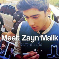 meet Zayn Malik before i die.