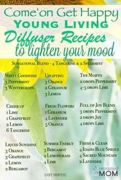 Are you looking for NEW Diffuser Blends Recipes? Here are a few Happy Diffuser Blends to help pull you out of a slump and give you a MOOD boost within minutes ~ give them a Young Essential Oils, Essential Oils Guide, Diffuser Recipes, Essential Oil Diffuser Blends, Mood, Geraniums, Grapefruit, Yl Oils, Doterra Oils