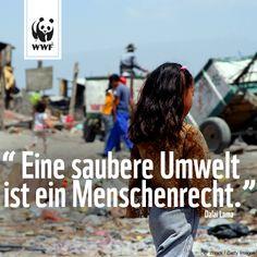"""Zitat zum Sonntag: """"Eine saubere Umwelt ist ein Menschenrecht."""""""
