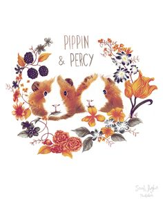 Pippin and Percy illustration - @officialzoella Zoella's guinea pigs, they're pretty cute. by Sarah Hughes