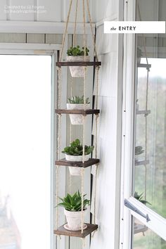 DIY room to room: Succulents