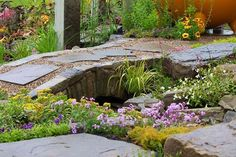 View RHS Garden design galleries for Inspiring ideas / RHS Gardening