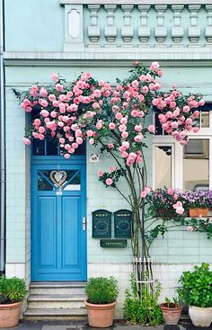 This is such a cute doorstep in Bonn, Germany! It would be so fun to explore and visit Germany to see all of the pretty doorsteps there!