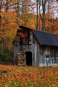 Rustic Look Wallpaper Farm Barn, Old Farm, Virginia Occidental, Look Wallpaper, Rustic Wallpaper, Barn Pictures, Nature Pictures, Autumn Pictures, Country Barns
