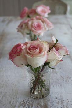 rose tinged ivory roses :)