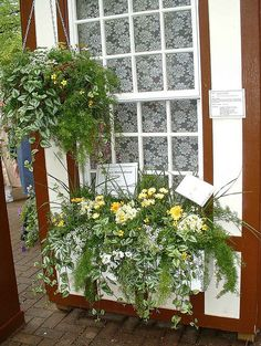 Window Box Way 5 | Flickr - Photo Sharing!