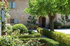 Roses and Rust: Gorgeous Garden in Provence