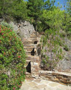Jardin Méditerranéen de Roquebrun