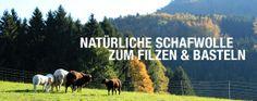 Schafwolle aus Österreich zum Nassfilzen Videos, Felt Tutorial, Sheep, Studying, Education