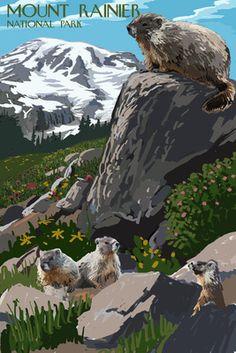 Mount Rainier National Park - Marmots - Lantern Press Poster