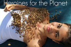 Heroines for the Planet: Maryam Henein: http://eco-chick.com/2011/12/9198/heroines-for-the-planet-vanishing-of-the-bees-director-maryam-henein/ bees, queen, planet interview, busi bee, barbara bee, maryam henein, honey bee