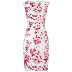 Precis Petite Floral Print Shift Dress, Pink/Multi (€165) ❤ liked on Polyvore featuring dresses, petite, sleeveless shift dress, pink maxi dress, petite evening dresses, floral midi dress and pink cocktail dress
