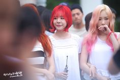 Helianthus sunny snsd dating