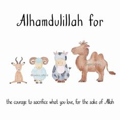 Alhamdulillah for the courage to sacrifice what you love for the sake of Allah.  #AlhamdulillahForSeries