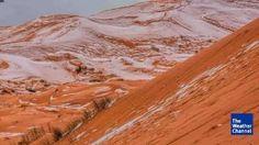 Bizarre Sight in the Sahara