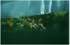 eL in de tuin van mijn ouders (1971)