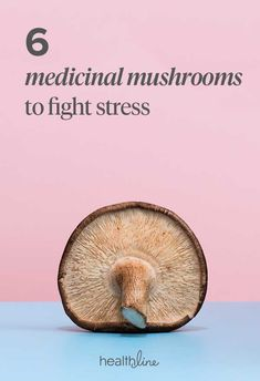 Mushrooms That Act as Turbo-Shots for Your Immune System 6 Mushrooms That Act as Turbo-Shots for Your Immune Mushrooms That Act as Turbo-Shots for Your Immune System Health Benefits Of Mushrooms, Mushroom Benefits, Food For Immune System, Brain Healthy Foods, Natural Pain Relief, Cancer Facts, Natural Treatments, Natural Remedies
