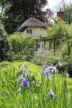 englishcottagedreams: Old Thatch Gardens 15-05-2014 by Karen Roe on Flickr