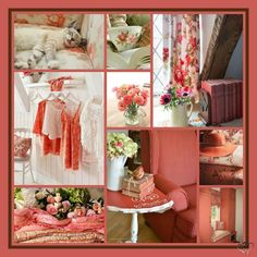 Shades Of Peach, Ladder Decor, Table Decorations, Rose, Magic, Collages, Beautiful, Color, Boards