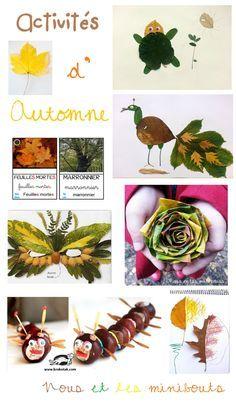 Activités d'automne - Autumn activities
