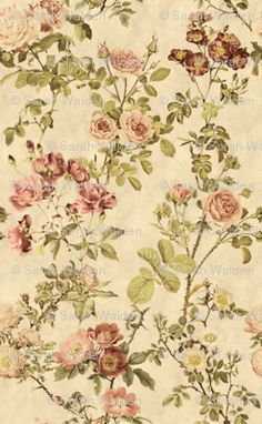 Watercolor English Rose ~ Parchment custom wallpaper by peacoquettedesigns for sale on Spoonflower Custom Wallpaper, Fabric Wallpaper, Victorian Wallpaper, Perfect Wallpaper, Draped Fabric, English Roses, Diy Dollhouse, Vintage Fabrics, Textured Walls