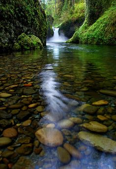 Punchbowl Falls, Oregon #nature