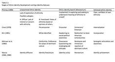 003 Troiden Homosexual Identity Development Model EPPP