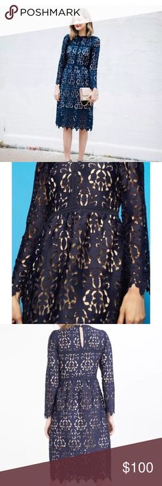 Zara Navy lace Dress New Beautiful Zara brand dress. Midi style. Size small. Zara Dresses Midi