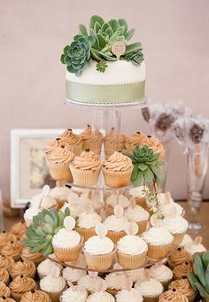 Wedding cupcake tower and cake with succulent plants.  Gorgeous natural color scheme.