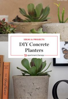 How to Make Modern Cement Planters Using Packaging | Each pot is unique and has an organic, handmade feel. It is not an instant gratification project and you will have to commit, but the results are well worth it.