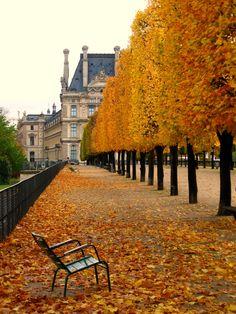 Jardin des Tuileries - Paris in autumn Jardin Des Tuileries, Paris France, The Places Youll Go, Places To Visit, Image Paris, Paris In Autumn, Autumn Fall, Winter, Wanderlust