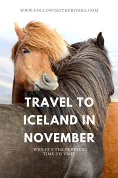 in November why its the perfect time to visit Travel to Iceland in November Find out why to in beats the other months Clue Its not yet and its not as busy as the other m. Iceland Travel Tips, Europe Travel Tips, European Travel, Travel Advice, Travel Destinations, Travel Ideas, Travel Hacks, Travel Goals, Winter Travel