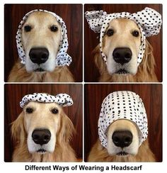 This is so useful! I could never figure out how to wear headscarves, but now it is all so clear to me.