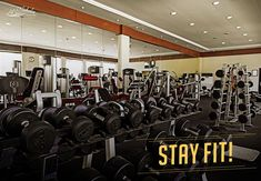 Don't wish for it, work for it! Fitness freaks can enjoy our well-equipped hi-tech gym. Call at 2688 3710 to know more. Aerobics Workout, Muscat, Resort Spa, Stay Fit, Tech, Wellness, Gym, Fitness, Keep Fit