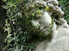 New England Garden Ornaments overgrown Storyboard, Yennefer Of Vengerberg, Slytherin Aesthetic, Foto Art, Garden Ornaments, Dragon Age, Belle Photo, New England, Garden Sculpture