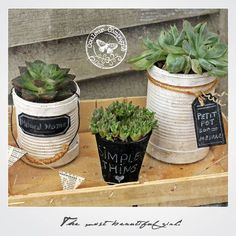 Les petits pots de fleurs recyclés de Martine : https://instagram.com/p/8AXYM3yv9O/ #conserves #upcycled