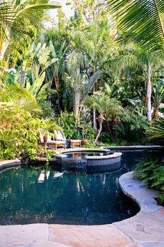 How to Design a Lush Tropical Retreat
