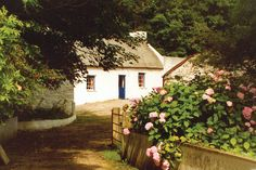 maybe our home will look like this one day...   irish thatched cottage  