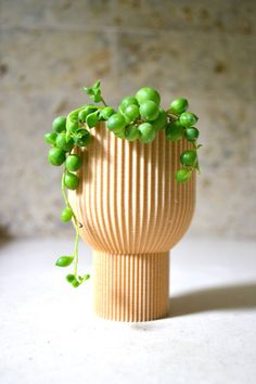 """""""The Chalice"""" is an elegant solution for your indoor plants that like to droop over the side! The shape and lines reminds me of a chalice from the medieval days, with a modern twist of course. These indoor planters are designed and 3D printed by Morse Studio. Modern Planters, Wood Planters, Indoor Planters, Planter Pots, 3d Printed Objects, I Am Amazing, Recycled Wood, Something Beautiful, Growing Plants"""
