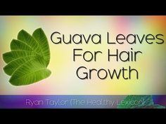 Guava Leaves: For Hair Growth - YouTube