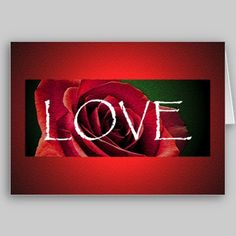 Single Rose Valentine's Day Card from http://www.zazzle.com/stevebrownleeart