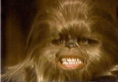 New trending GIF on Giphy. star wars creepy chewbacca star wars holiday special lumpy. Follow Me CooliPhone6Case on Twitter Facebook Google Instagram LinkedIn Blogger Tumblr Youtube