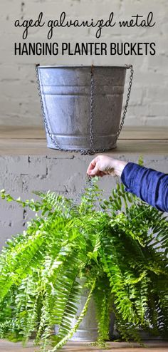 We're sharing 2 tutorials in one: how to age galvanized metal and how to make galvanized buckets into hanging planters for your porch! This is an easy way to add farmhouse style to your outdoor space. Hanging Planters Outdoor, Galvanized Planters, Hanging Plants, Galvanized Metal, Galvanized Decor, Planters For Front Porch, Cheap Planters, Recycled Planters, Tall Planters