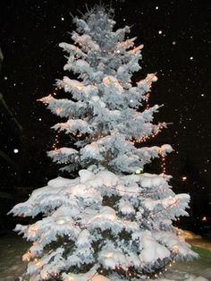 Sairaanhoitajan kirje joulupukille, http://janholmberg.weebly.com/2/post/2013/12/kirje-joulupukille.html